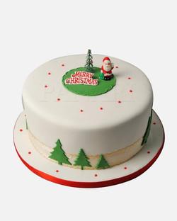 Christmas Cake CS5854