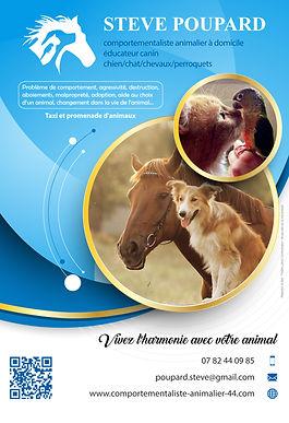 Stève Poupard Comportementaliste animalier 44 flyer