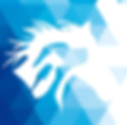 Logo Stève Poupard comportementaliste animalier 44