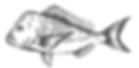 Fish_logo.png