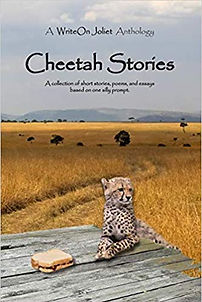 WriteOn Joliet Cheetah Anthology book co
