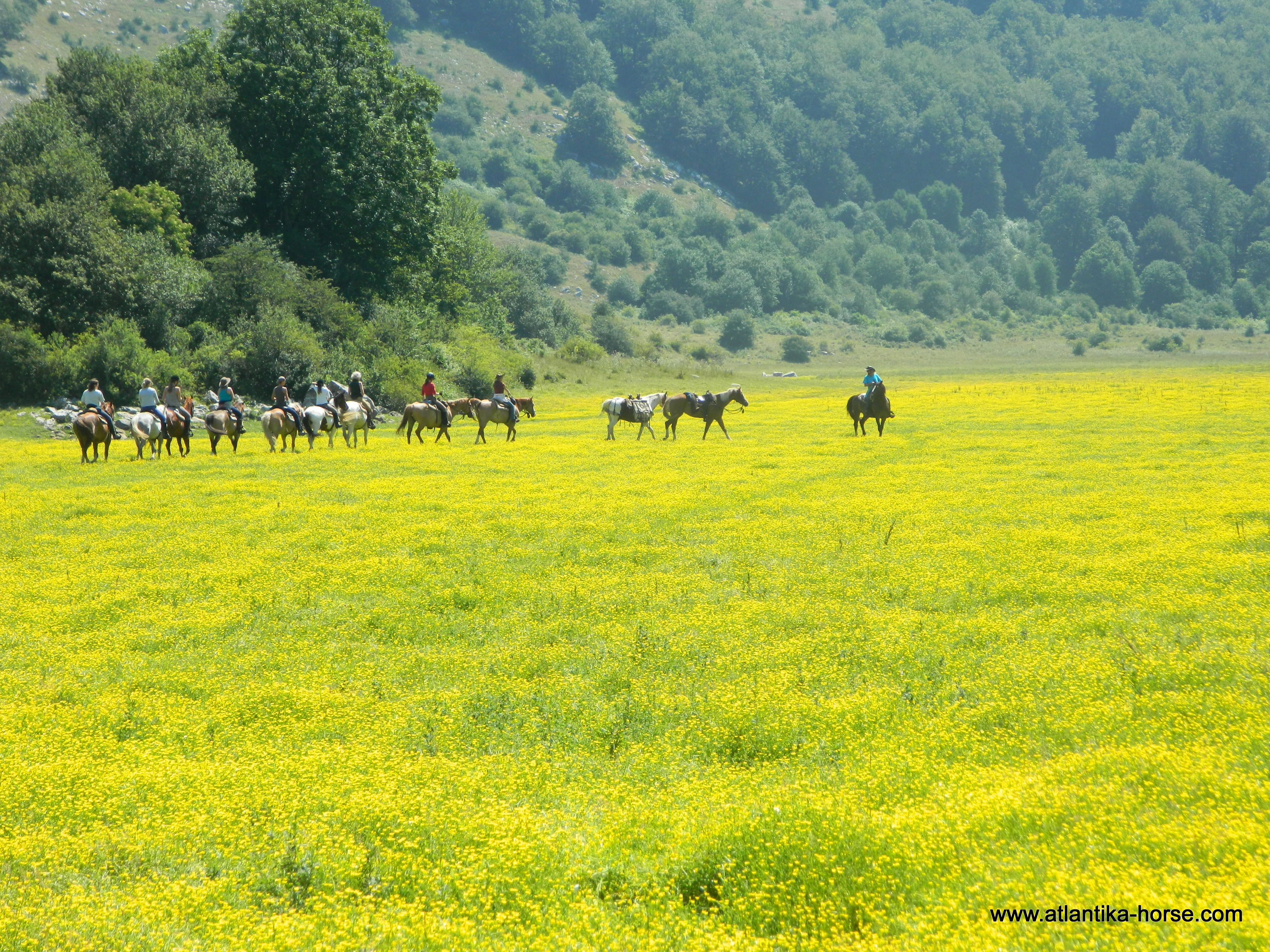 Colle del Orso site (17)