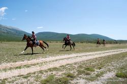 Dalmatia site (6)
