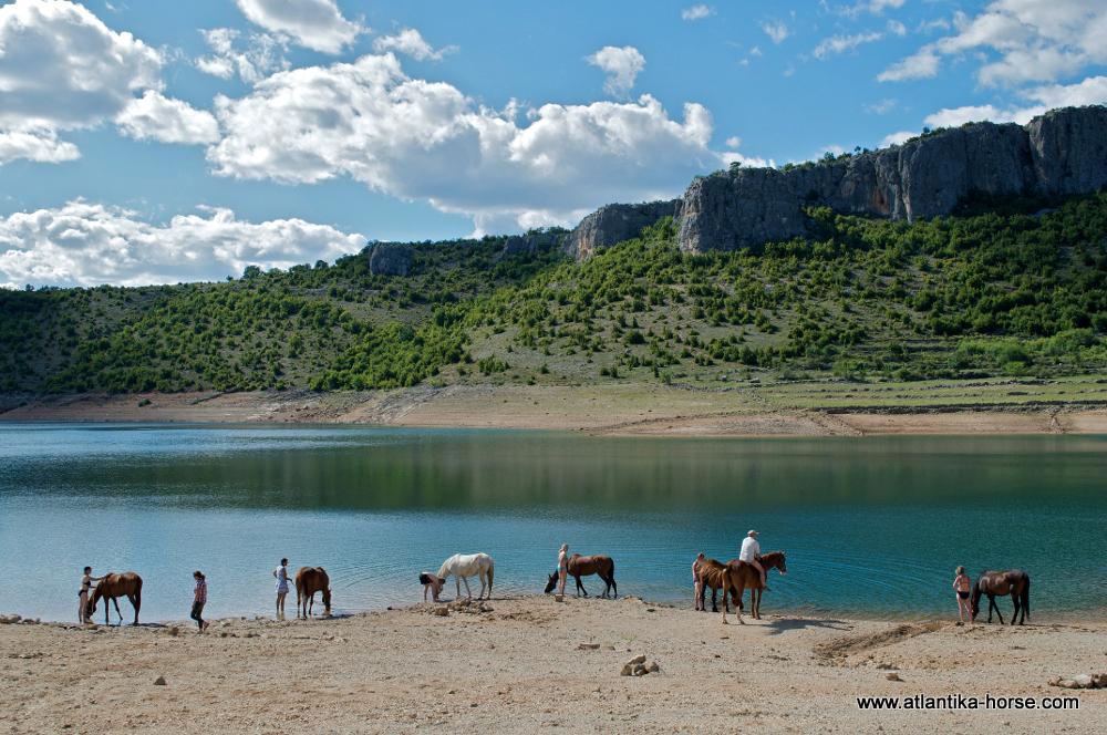 Dalmatia site (5)