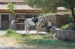 Конные туры в Европе. Греция, Крит. (10)