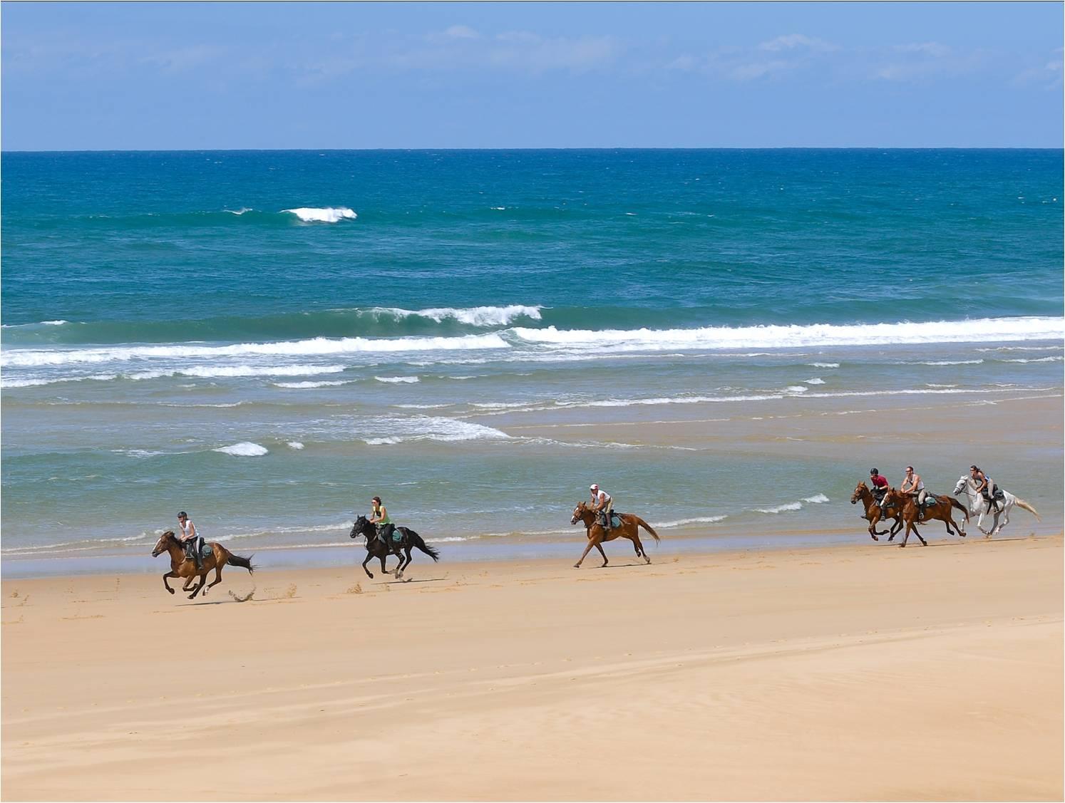 Конные туры во Франции