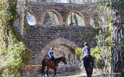 Rutas dels Monastirs site (10)