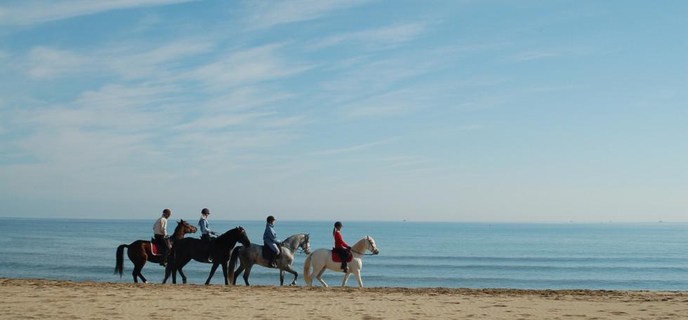 """Конный поход """"От гор к морю""""в Испании"""