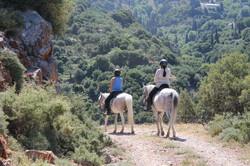Конные туры в Европе. Греция, Крит