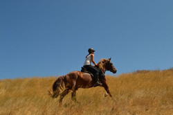 Конные туры в Европе. Греция, Крит. (14)