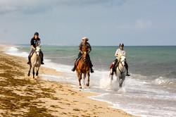 Конные туры в Португалии