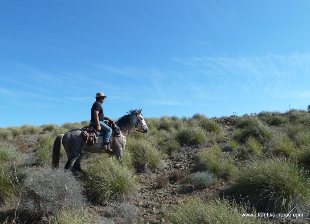 Конные туры в Испании