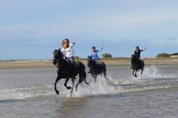 Конные туры во Франции. Прованс