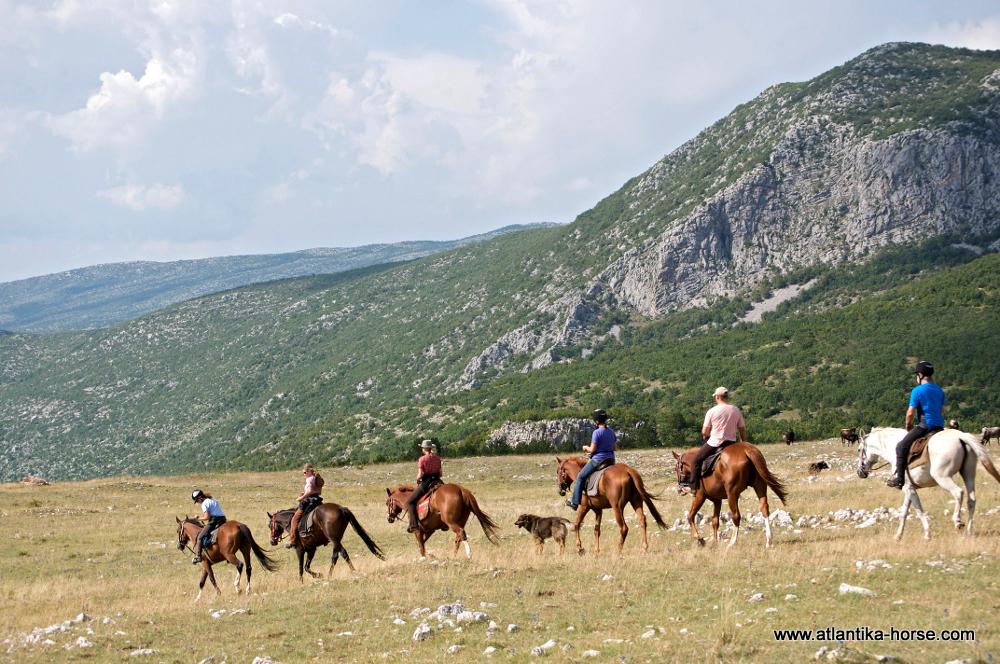 Dalmatia site (8)