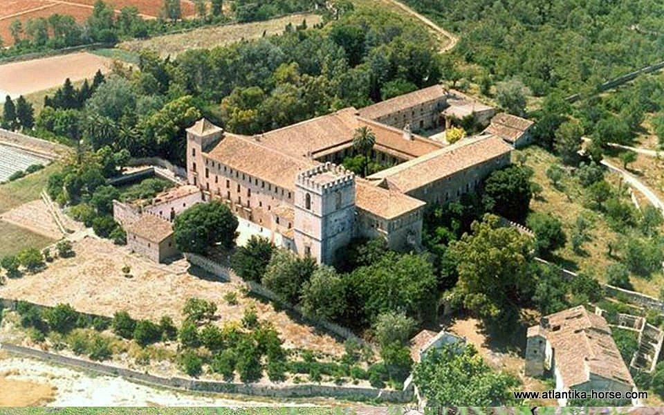 Rutas dels Monastirs site (11)