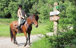 Конные туры в Испании. Каталония