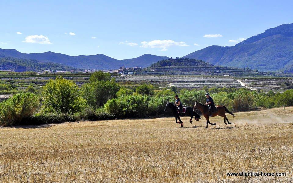 Rutas dels Monastirs site (4)