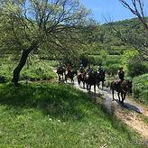 Dalmatia site (17).jpg