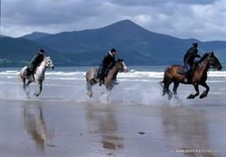 Конные туры в Ирландии