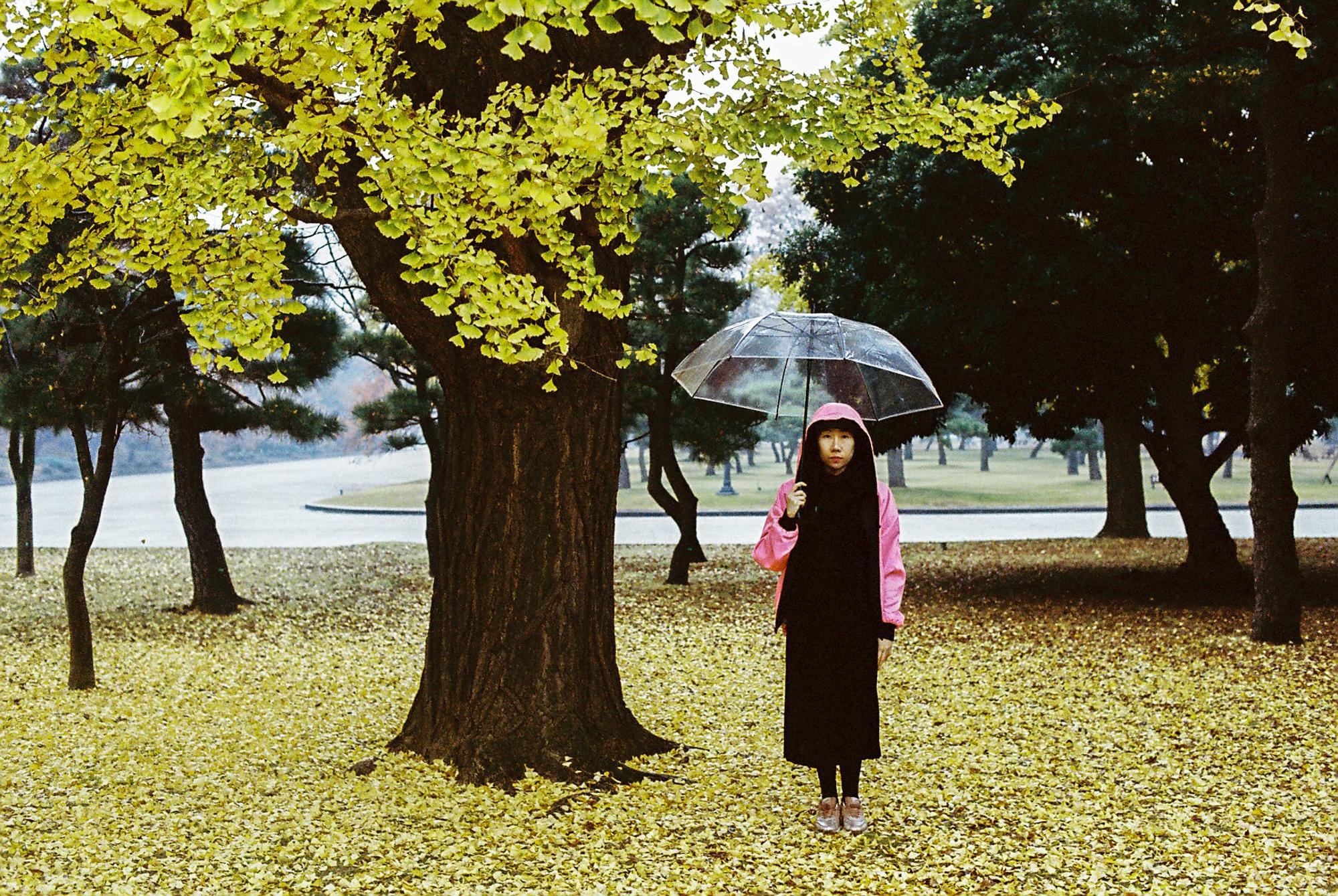 © Gray Kotze - Winter/Autumn Series