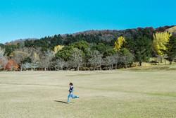 © Gray Kotze - Nara Park