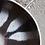 Thumbnail: Assiette Organi