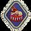 Thumbnail: Broche Lion