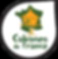 thumbnail_logo_CDF_goutte.png