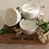 Thumbnail: sissie green natural rapeseed compostable tealight candle