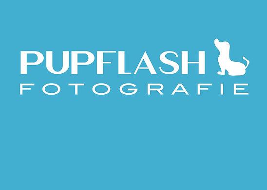 Logo Pupflash 01.jpg