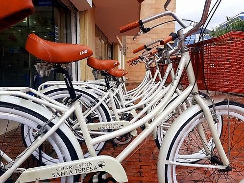 Bicicleta Holetes Charleston