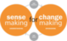 SenseMaking for ChangeMaking