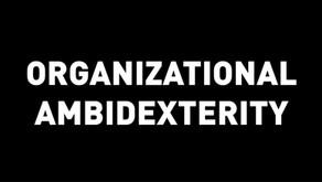 Making Sense of Ambidexterity