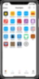 Gemstone Lights app - Flood Light Settings