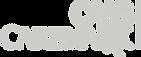 CVS Caremark: Insurance Logo