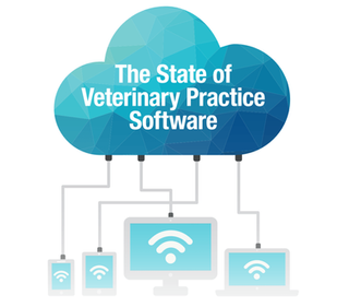 The State of Veterinary Practice Software