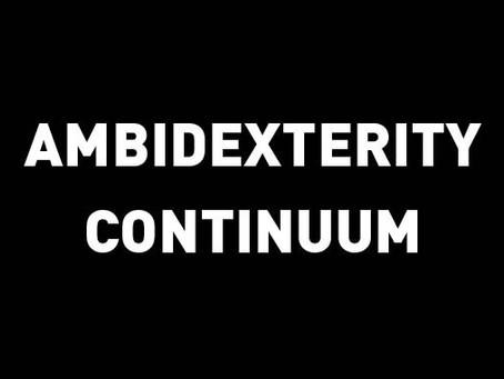 Ambidexterity Continuum