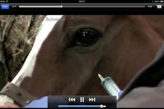 Vet Appidemic: An Equine App Explosion