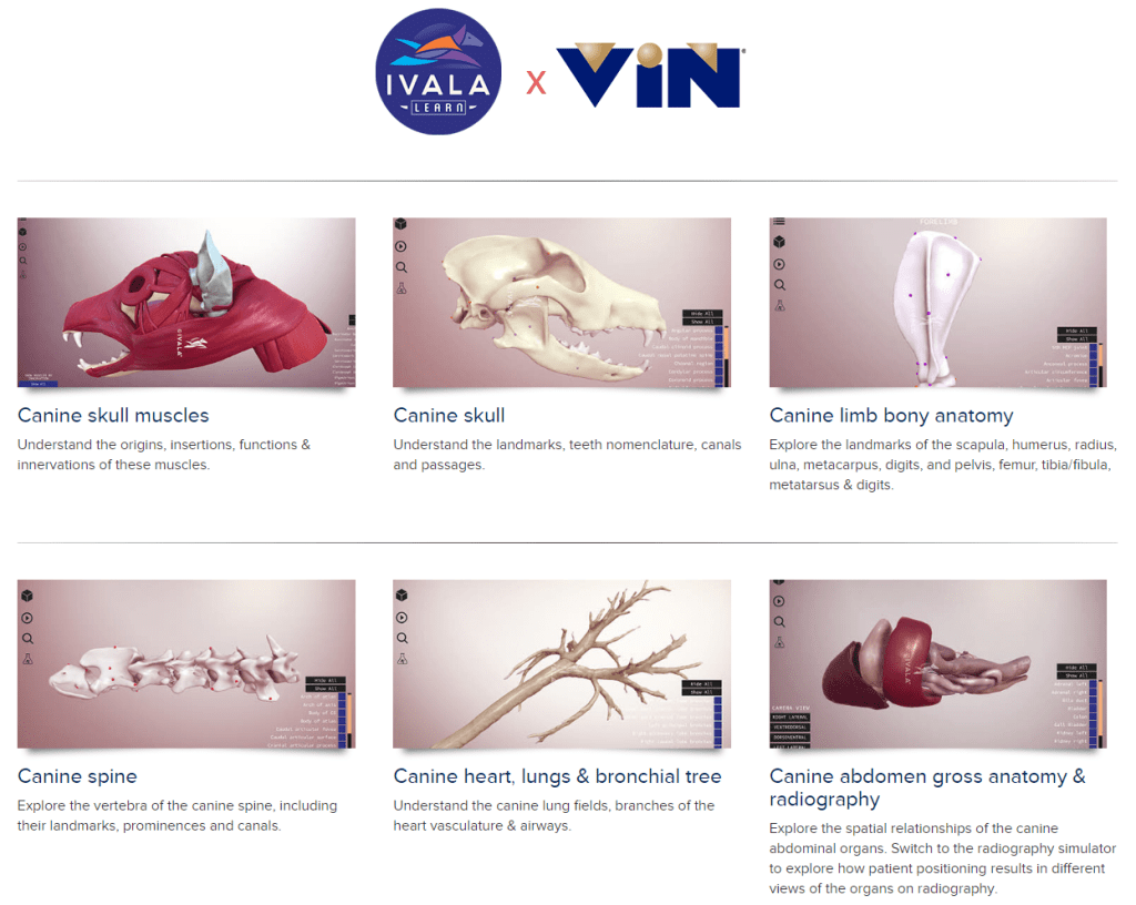 Vins Techy New 3d Learning Will Blow You Away Vmd Technology