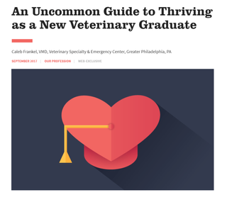 How to Thrive as a New Veterinary Graduate