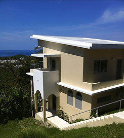 Vieques1.png