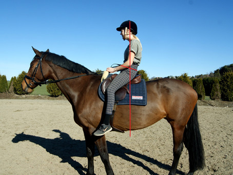Behandling av hest og rytter- sammen!