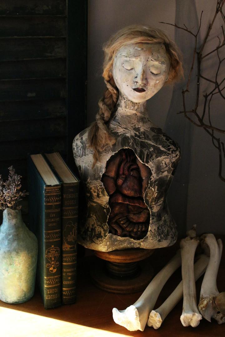 Anouk, Anatomica