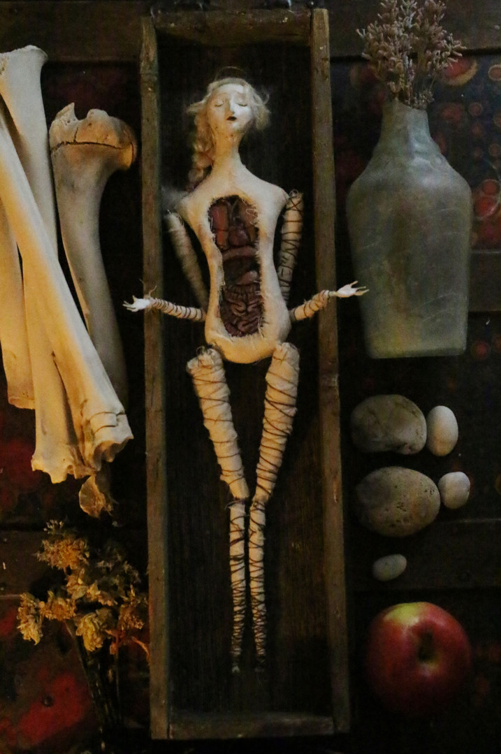 Isabelle, Anatomica in Coffin