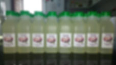 processamento-de-coco-oleo-de-coco-piaui