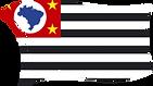 Bandeiras MEAP - SP.png