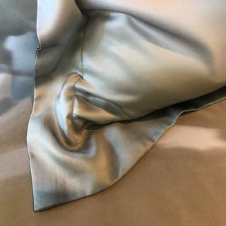 Silk Sham- Enlightenment