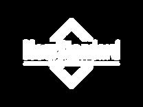 New Standard White logo 800x600.png