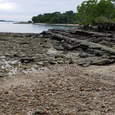 Aug 18 - 30  Las Perlas Islands, Panama