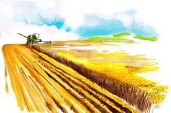 Agrofest 2015 aquarell painting